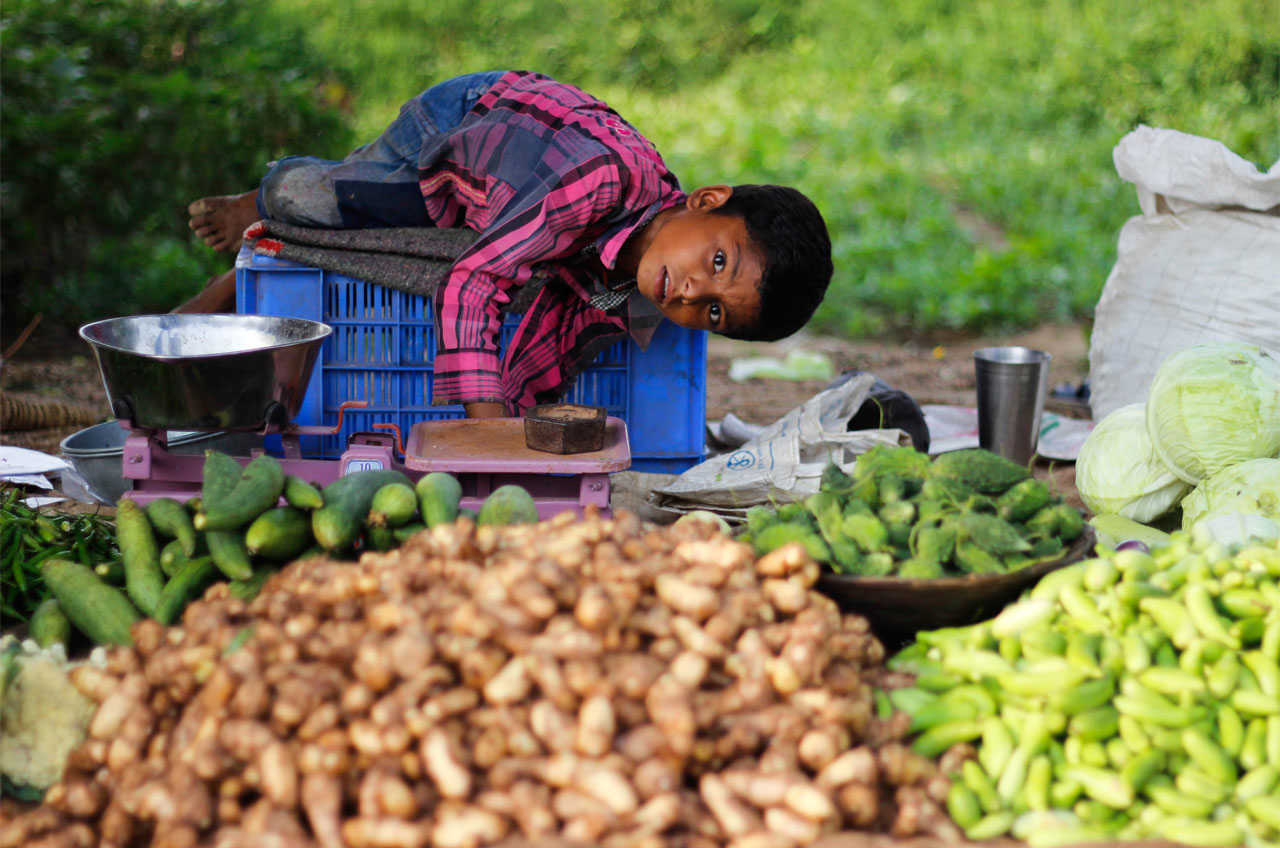 VSS Project for Malnutrition in Madhya Prades