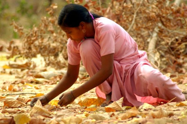 ADHAR to Fight Malnutrition, Child Labour & Education