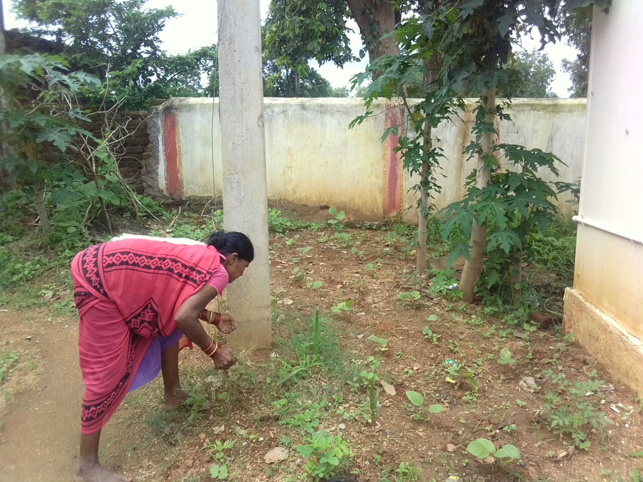 AWW of Vijaynagar planting seeds in Kitchen Garden